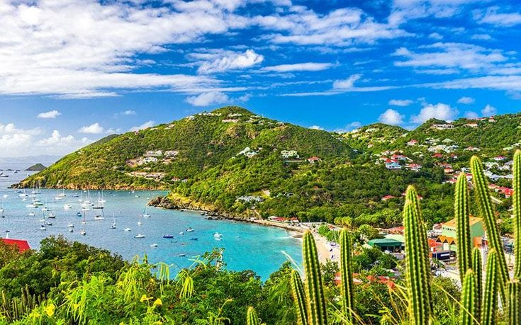 20 reasons why you should visit the Caribbean right now  http://www.telegraph.co.uk/travel/destinations/caribbean/articles/reasons-to-visit-the-caribbean/
