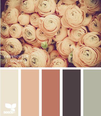 ranunculus tones: Ranunculus Tones, Ranunculustones, Wedding Color, Color Palettes, Design Seeds, Color Combos, Color Schemes, Color Pallets, Bedrooms Color