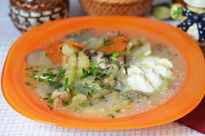 рецепт супа с вешенками