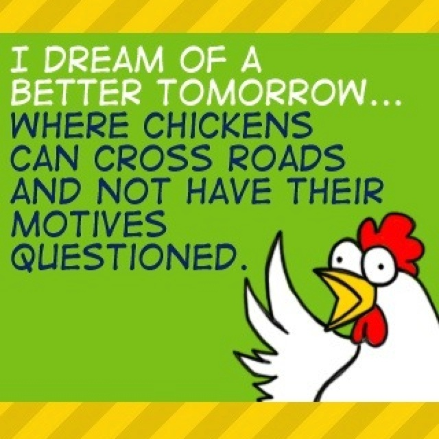 Chickens: The Roads, Funny Things, Fries Chicken, Quote, Big Birds, Chicken Jokes, Funny Stuff, Funny Photos, Chicken Crosses