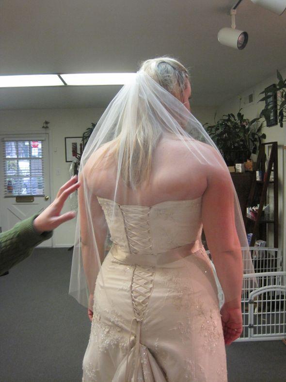 Weddingbee Boards Back Fat Needs To Do One