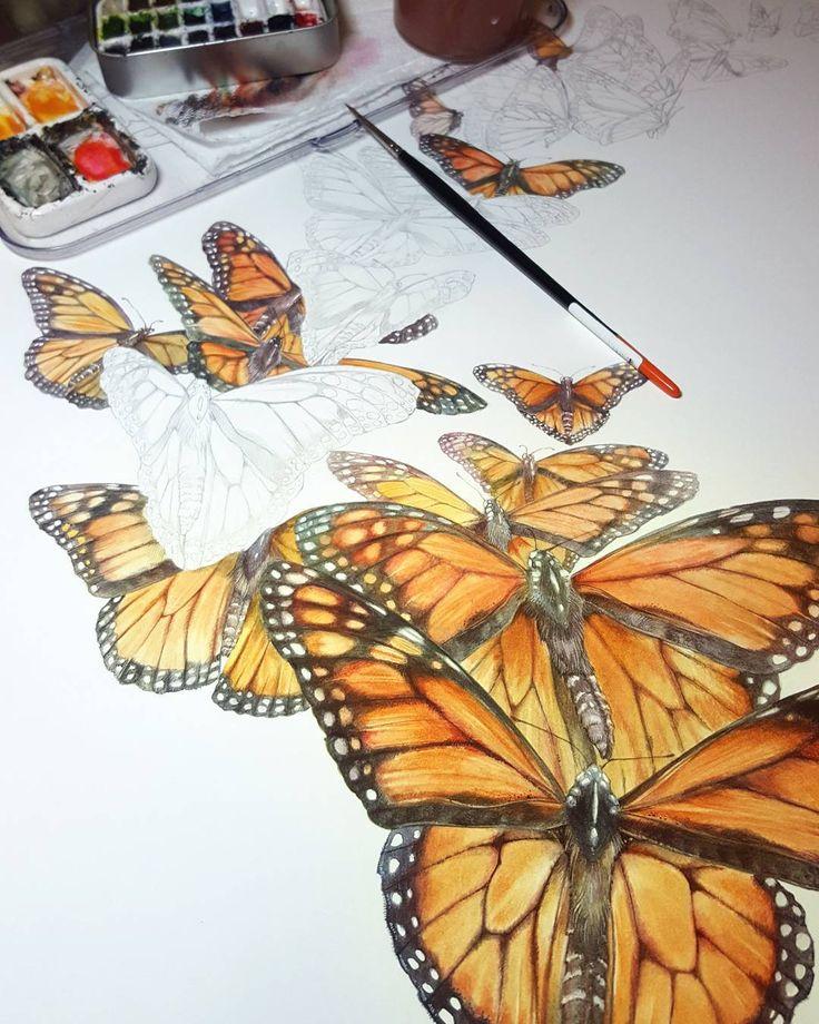 #monarch #butterflies for @pollinatorpartnership  #pollinators #monarchbutterfly #butterfly #watercolor