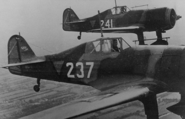 Dutch fighter Fokker D.XXI 1st Fighter Squadron in flight
