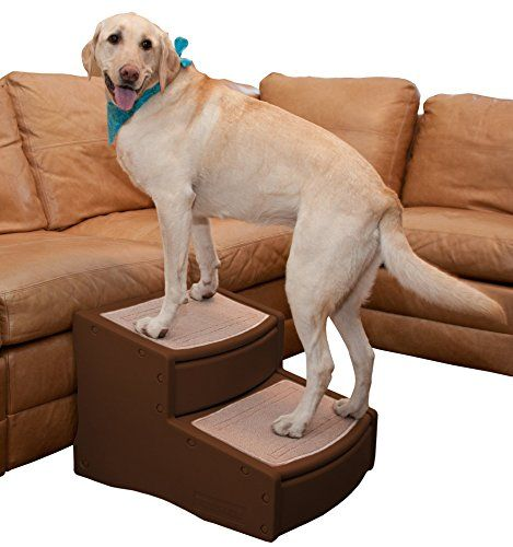 Pet Gear Easy Step II Extra Wide Pet Stairs, 2-step/for cats and dogs up to 200-pounds, Chocolate *** Want to know more, click on the image. #DogBedsFurniture