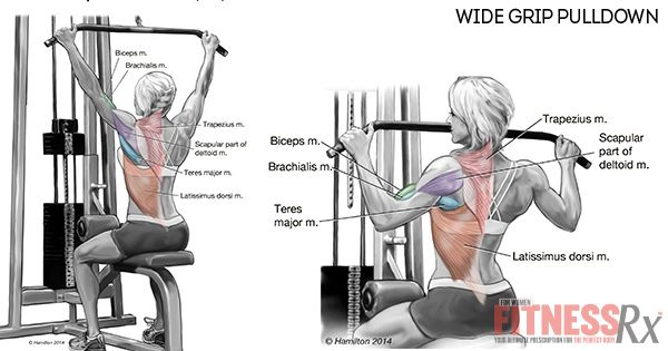 Build A Strong Back Wide Grip Pulldowns Miscellaneous