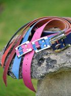 belts in colours the pop! #leather #belts #pioneros http://www.pioneros.co.uk/shop/catDetail.php?CategoryID=2