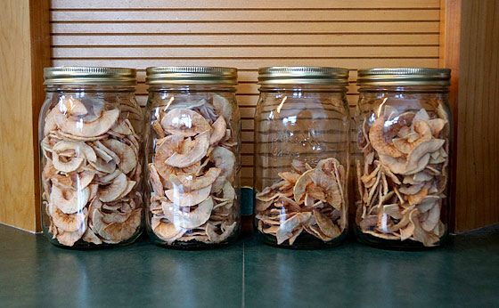 How To Dehydrate Apple Slices With A Dehydrator By Ken Jorgustin - Modern Survival Blog  Not too long ago I made a batch of dehydrated apple slices. If you happen to have a food dehydrator, you might consider treating yourself to this surprisingl...
