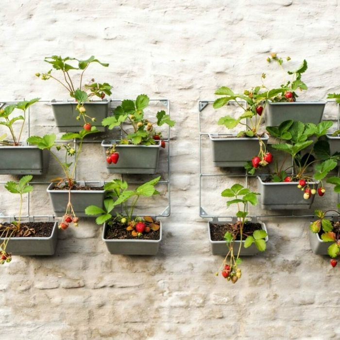 1001 Kreative Garten Ideen Zum Selbermachen In 2020 Kleinen Raumgartnerei Terrassenpflanzen Garten Ideen Gemuse