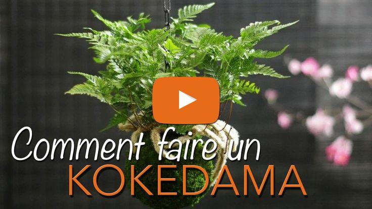 Kokedama comment faire ? Kokedama instructions. Kokedama suspendu. KOKEDAMA tuto. Kokedama DIY. Interview du spécialiste kokedama Paris. Voici l'une des gran...