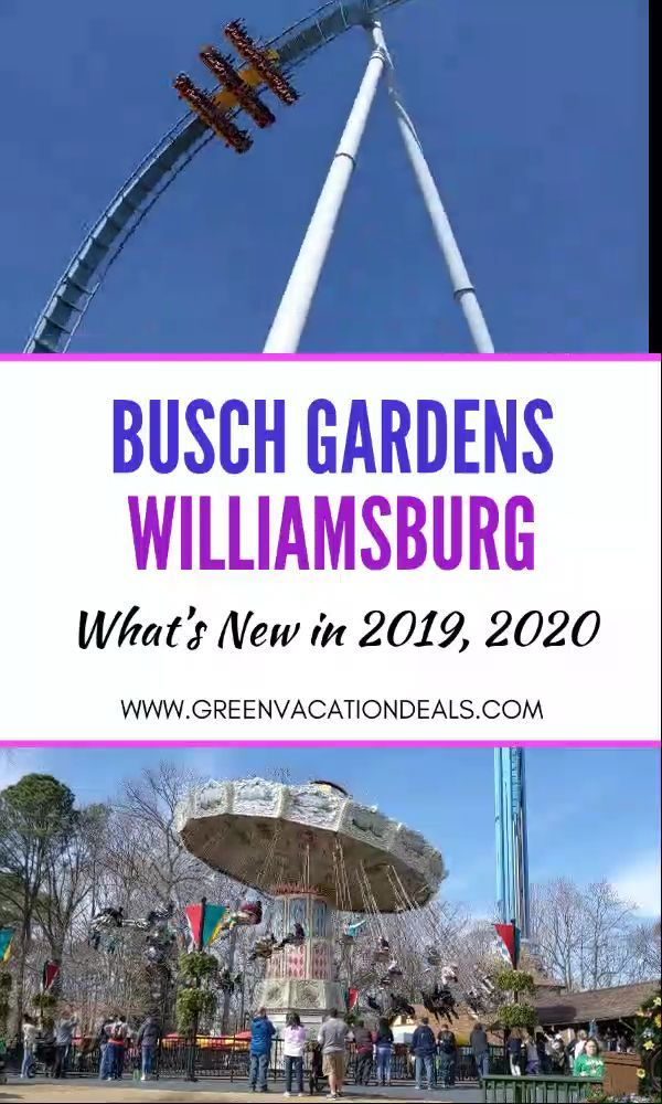 c8947b91625a8bd2b54f5865aebf80a0 - Busch Gardens Williamsburg New Ride 2019