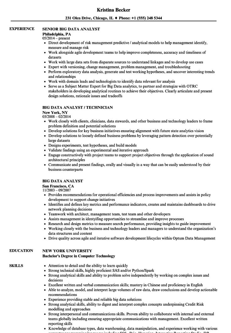 Resume Examples Data Analyst Project manager resume