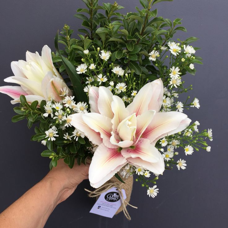 2 Dec 2015 Poco Posy  $30 including delivery to Brisbane. Order now. www.pocoposy.com.au
