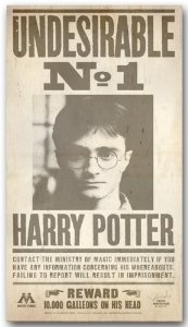 161 best images about harry potter on Pinterest | Ron ...