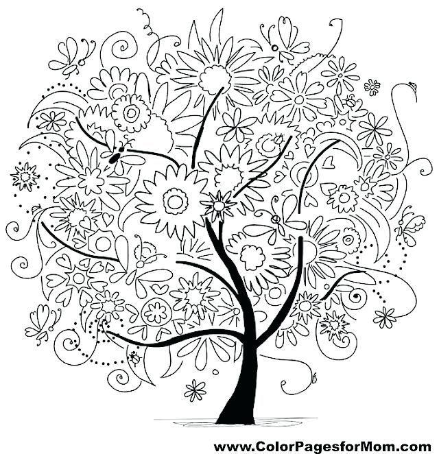 картинки чудо дерева карандашом без помощи стороны