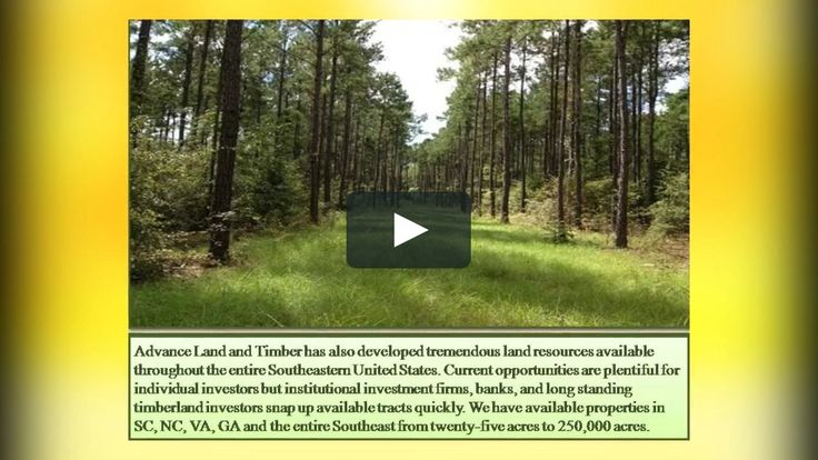 We provide you best and ultimate hunting land for sale listings are the most current and diverse around the country. Find your special piece of hunting land here with us! For more info contact us or visit our webpage. http://www.advancelandandtimber.com