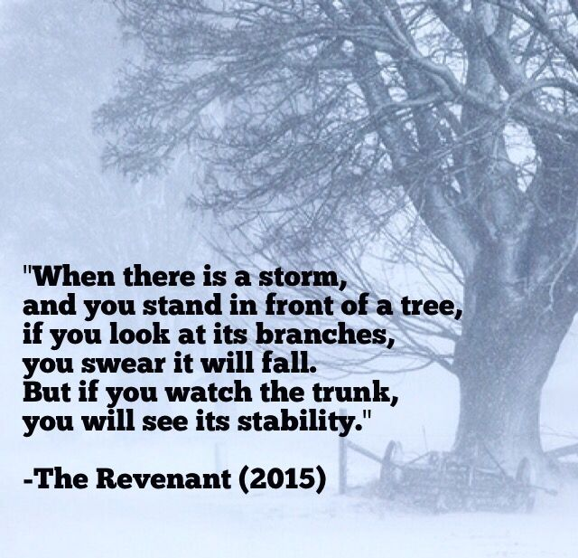 "When there is a storm. And you stand in front of a tree. If you look at its branches, you swear it will fall. But if you watch the trunk, you will see its stability."" -The Revenant (2015)"