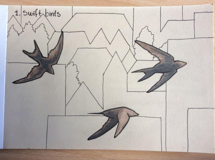 #inktober #inktober2017 #swiftbirds