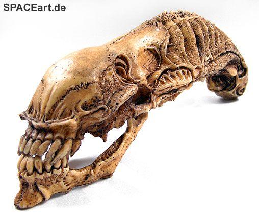 Alien 2: Xenomorph Skull, Modell-Bausatz ... http://spaceart.de/produkte/al066.php