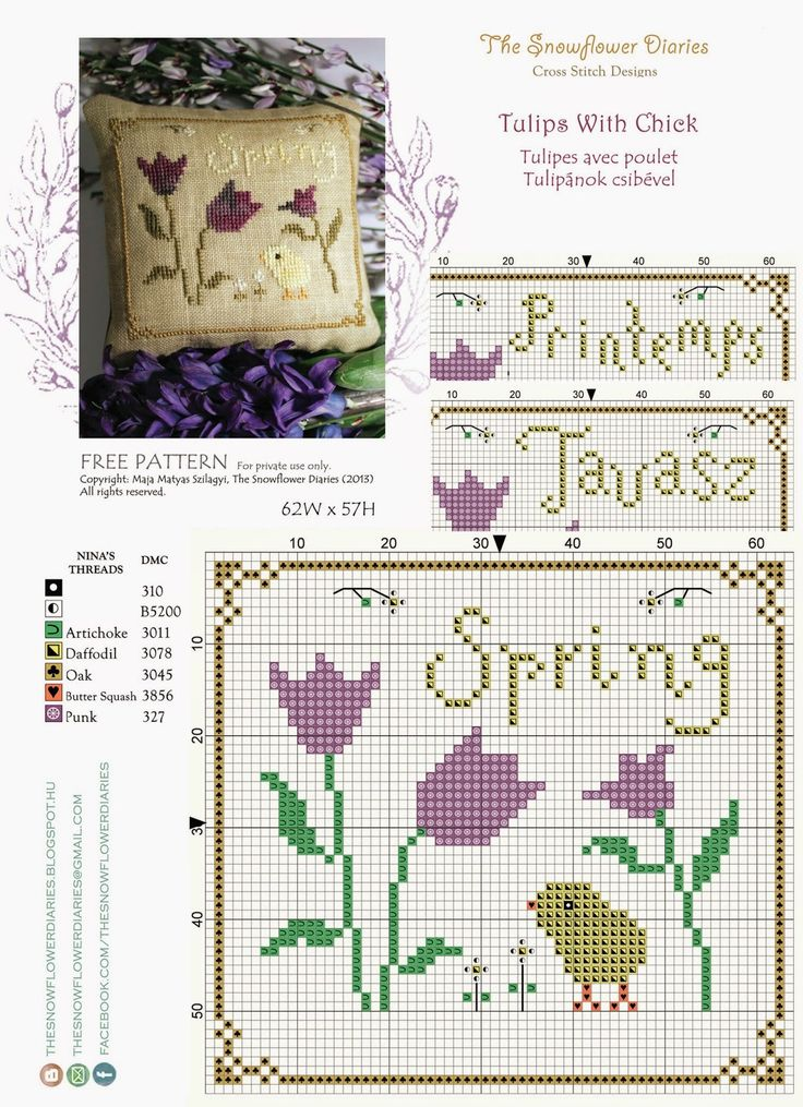 The Snowflower Diaries: TULIPS WITH CHICK