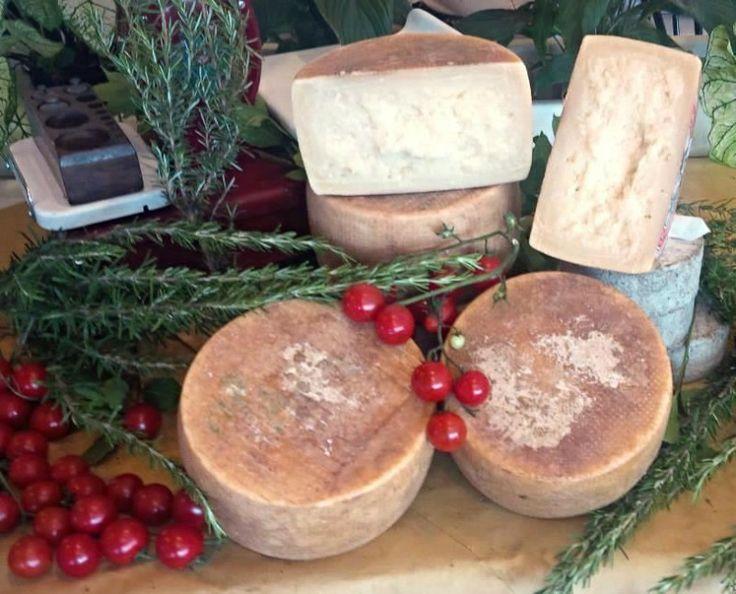 E' un formaggio stagionato dal sapore fragrante ottenuto da latte intero esclusivamente di pecora a pasta molle o semidura. La pasta ha una struttura compatta e tenace al taglio. http://www.makehandbuy.com/pecorino-gnorante-confezione-da-1-kg.html