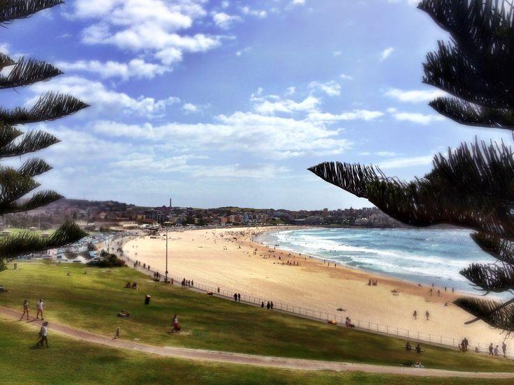Famous Bondi Beach (Sydney NSW)