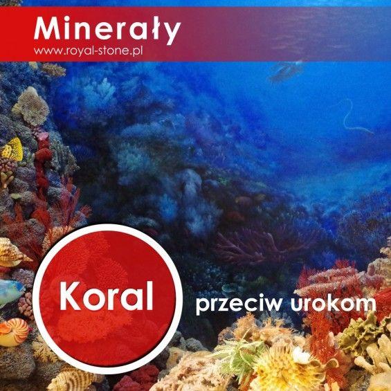 Koral_koralowiec_royal-stone_okładka2