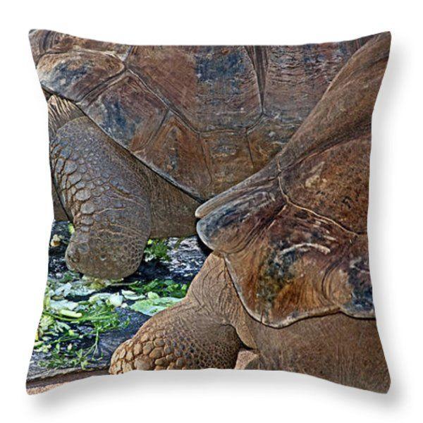 Galapagos Tortoise Throw Pillow by Miroslava Jurcik