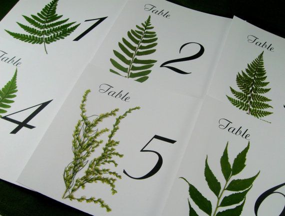 Wedding Table Number for Woodland Wedding, Wedding Table Cards, Real Woodland Botanicals, Garden Wedding
