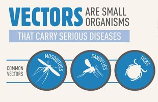Monday April 7th is World Health Day. This year it focuses on the dangers of vector-borne diseases and how much of an impact it could have if we raise awareness and help to press the governments of the most affected parts of the world to provide better screening and prevention and stop these deadly diseases in their tracks. Visit the World Health Organization's website to learn more and get involved in #WorldHealthDay activities in your area!