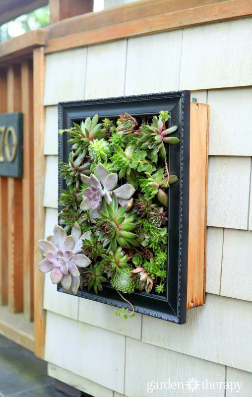 17 beste afbeeldingen over garden containers are dreamers op pinterest potplanten tuinieren - Outdoor tuinieren ...