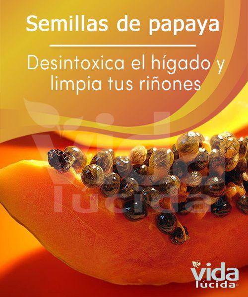 Los beneficios de las semillas de papaya