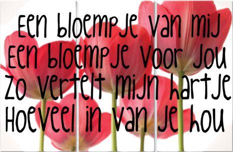 een bloem voor jou gedicht - Google zoeken