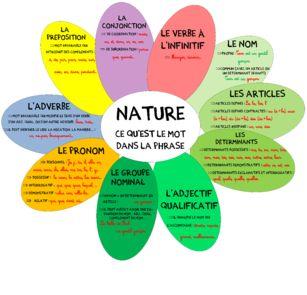 Nature et fonction affichage