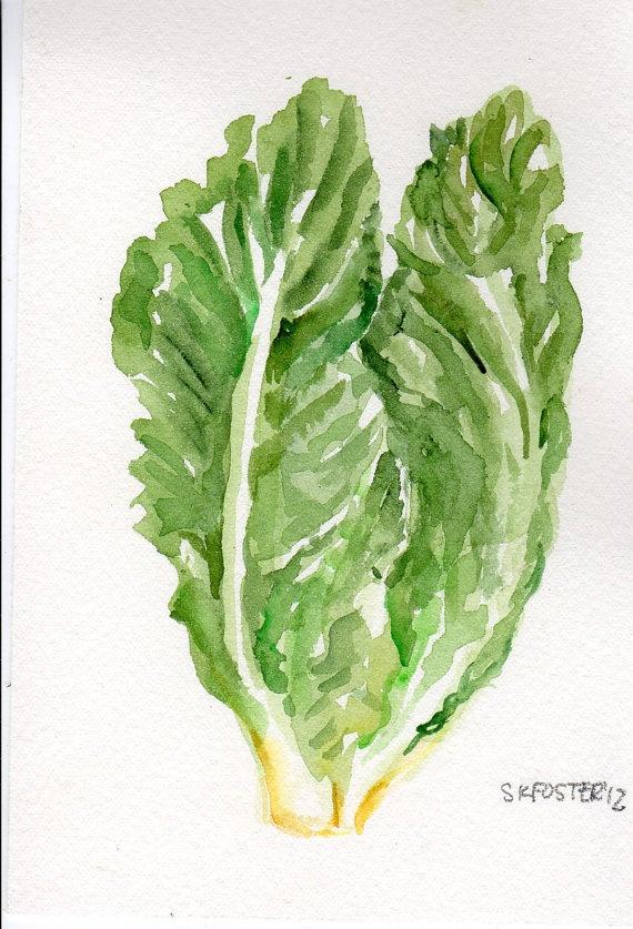 4 x 6 Original  Romaine Lettuce Painting by SharonFosterArt, $8.50