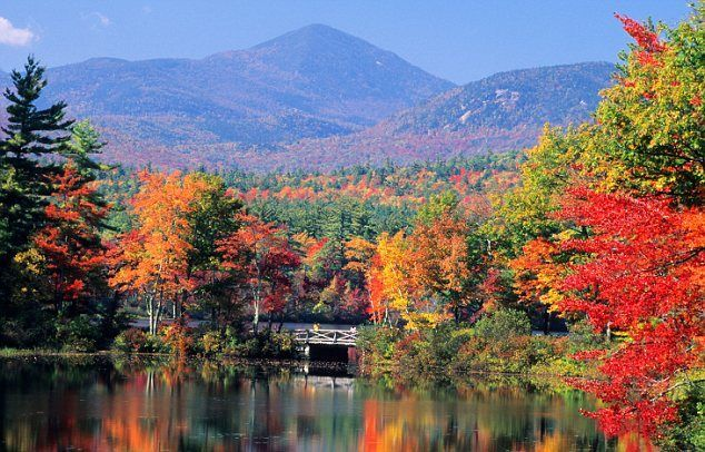 Fall in New England Golden wonderland: Lake Chocorua in New Hampshire becomes a riot of colours as the season changes. | Originally pinned by Vicki Rowan | www.aaa.com/travel #aaa #leafpeeping #falltravel