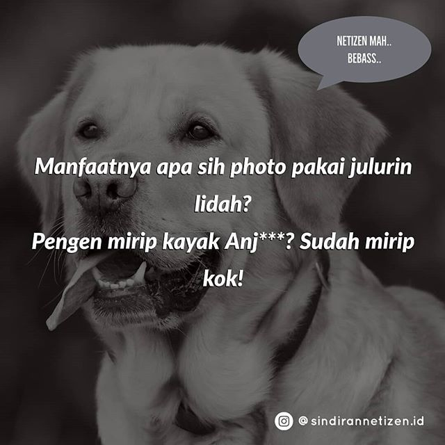 Sindiran Netizen Indonesia Sindirannetizen Id Instagram