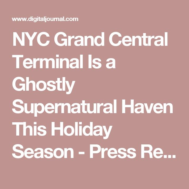If you were wondering what to get me for christmas, this is it!!! Holiday Ghost Hunting
