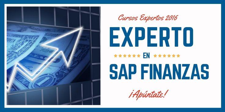 Cursos Expertos 2016. SAP Finanzas #livetraining #traintium