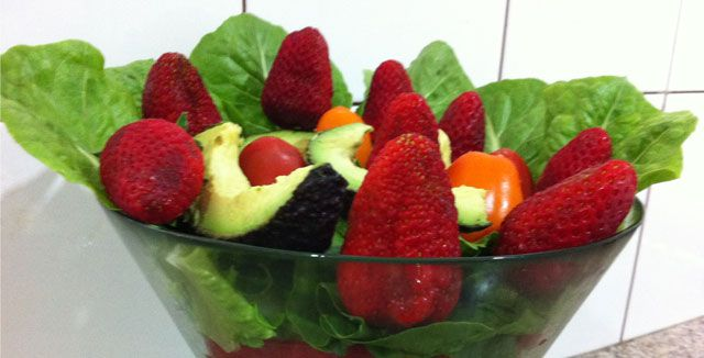 Some of our clients prefer raw food, others prefer vegetarian food or other forms of feeding.