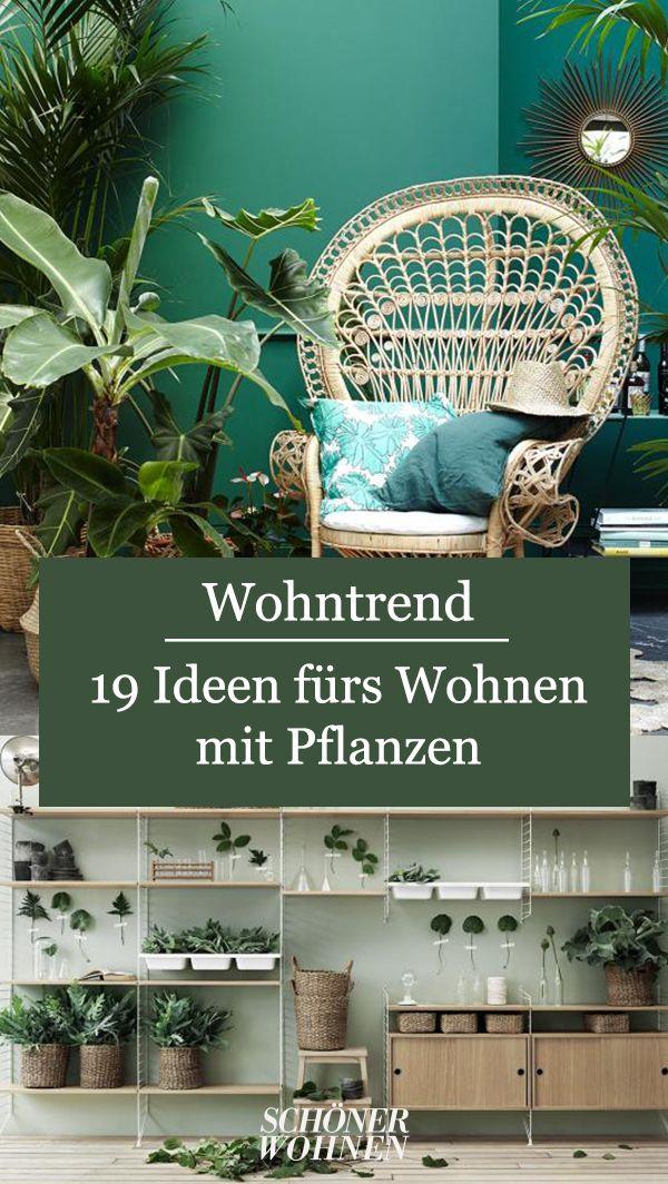 Plant Love Im Wandregal Bild 5 Wohnen Schoner Wohnen Wandregal
