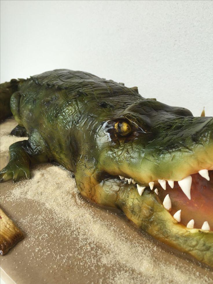 рекомендую тем, торт крокодил картинки это очень тяжёлый