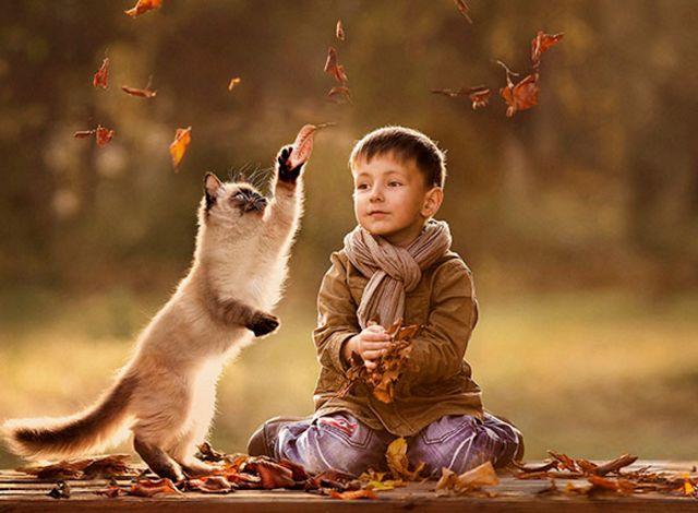 Tiernas+Imagenes+De+Gatos+Con+Niños