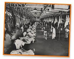 RssFeed moreover Livestock Stockyards furthermore 8 Bucetas blogspot besides 1 Bucetas blogspot further  on oscar mayer plant chicago il