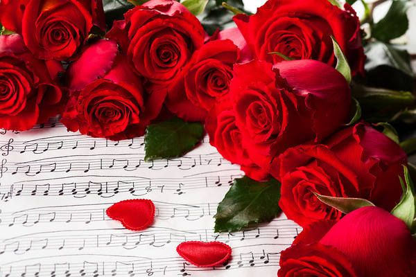 Romantic Background with Hearts Roses and Music Sheet