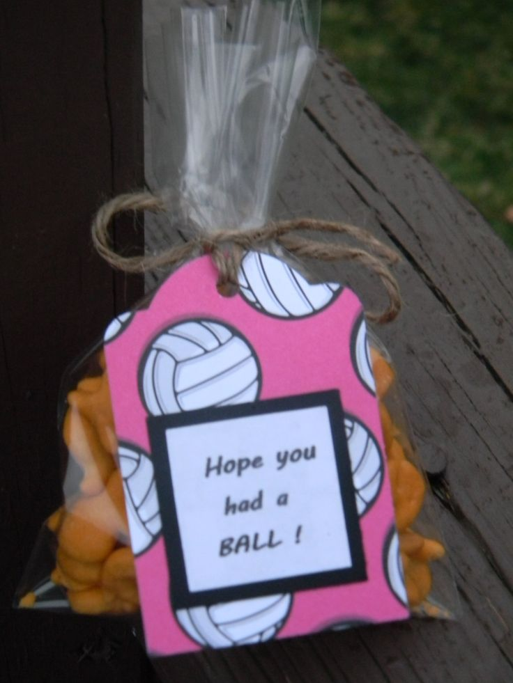 Volleyball goodie bag tags (set of 12); Volleyball party, volleyball favor tags, sports party decor by PagesbyNat on Etsy