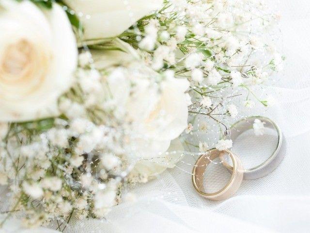 Wedding Tent Rental | House Wedding Ideas