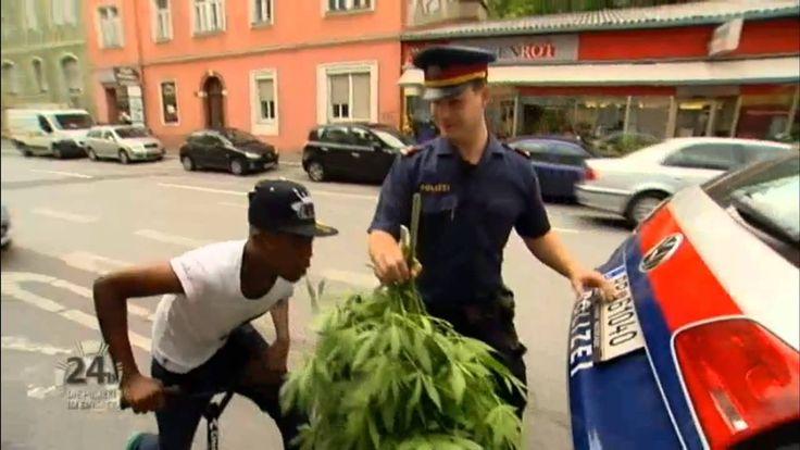In der Grazer Polizeiinspektion Karlauerstrasse geht ein brisanter Hinweis ein: Ein Mann hat auf der Terrasse einer gegenüberliegenden Wohnanlage eine Marihuana-Plantage entdeckt und diese auf Fotos festgehalten. Sogar der vermeintliche Besitzer ist beim Giessen der Pflanzen auf einem der zugesendeten Bilder zu sehen. Die Beamten fahren zu dem Wohnhaus und können dort tatsächlich mehrere Marihuana-Pflanzen [ ]