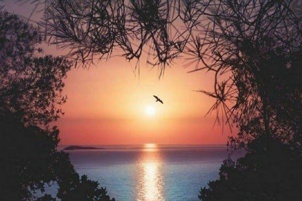Paling Hits 30 Gambar Pemandangan Sunset Hd Download Wallpaper Pemandangan Dengan Kualitas Hd 1080px Background Di 2020 Pemandangan Fotografi Alam Matahari Terbenam