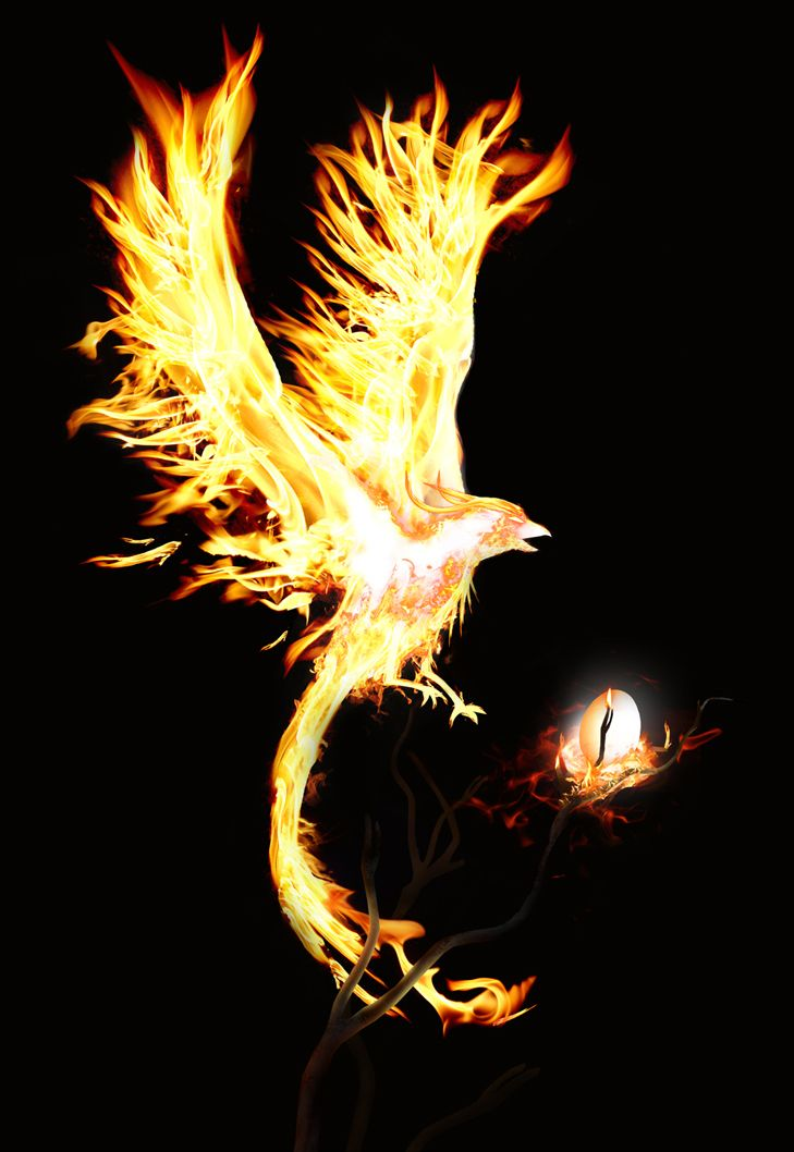 The mythological Phoenix easily defines Resplendent: Splendid or dazzling in appearance; brilliant.