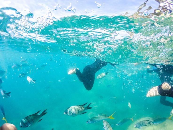 Whitehaven Beach, The Whitsundays, Queensland Australia | Where's Mollie? A UK Travel And Lifestyle Blog-33